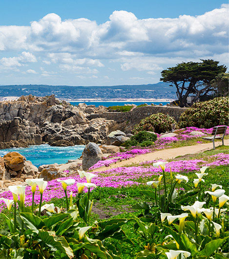 Monterey Bay Coastal Recreational Trail In California