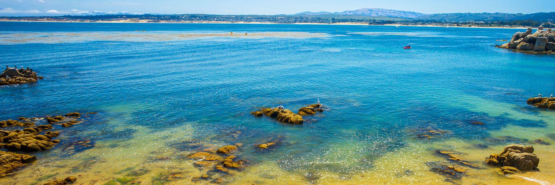 Travel Updates In Wave Street Inn Monterey California