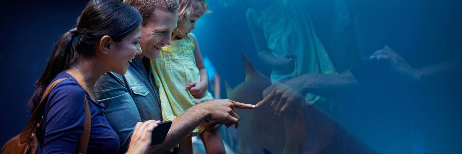 Under The Sea Package At Wave Street Inn Monterey California